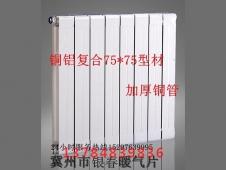万博manbet客户端下载复合暖气片75×75 (2)