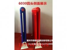 钢二柱6030(4)