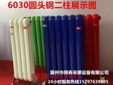 钢二柱6030(3)