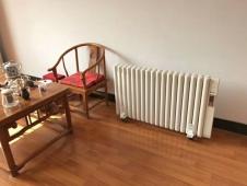 电暖气片 (6)