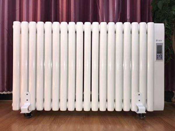 电暖气片 (4)