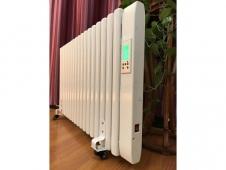 电暖气片 (5)